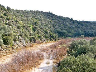 Guadalmena Límite entre Ciudad Real y Jaén