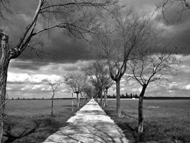 Manzanares Camnio al Cementerio