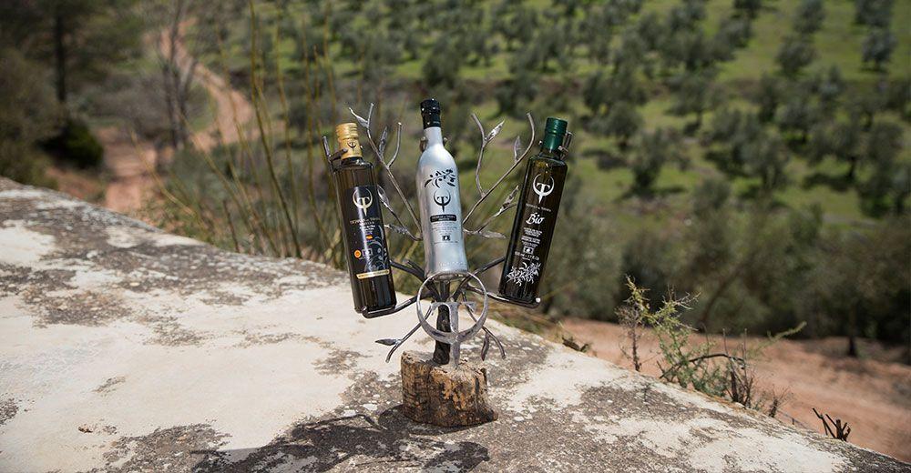 El Aceite de Oliva Virgen Extra