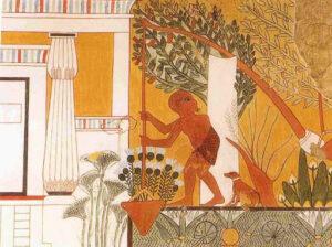 historia del aceite de oliva - Egipto