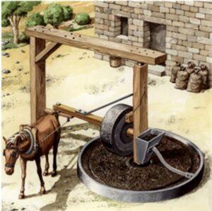 historia del aceite de oliva - Roma