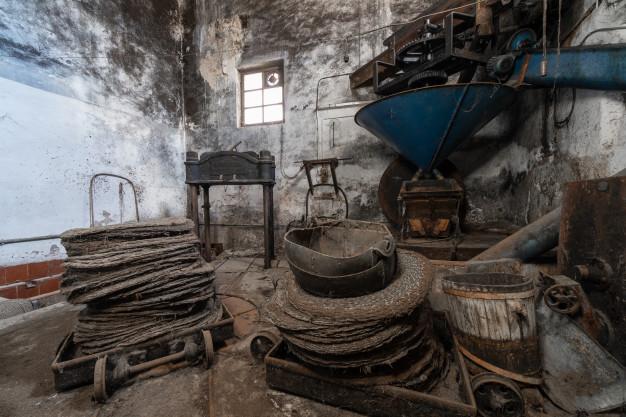 Cuál es la Historia del Aceite de Oliva